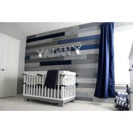 One of the kind colors for a boy nursery
