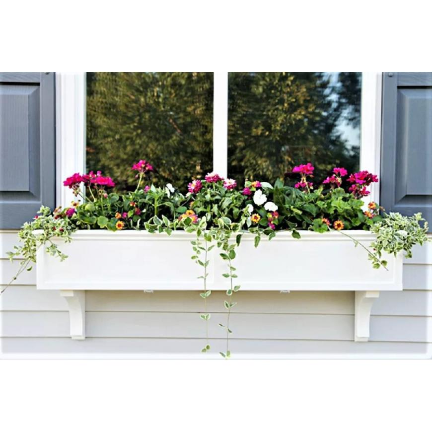 Window Box Contemplations for your home